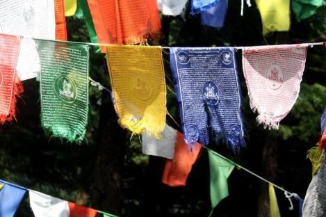 Flag prayers in Dharamsala